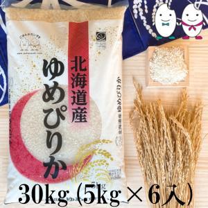 お米 30kg(5kg×6) 北海道ゆめぴりか 令和2年産|senda