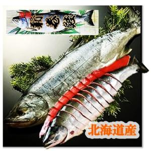 【贈り物 ギフト ご自宅用 配送OK 】  北海道産の新鮮な鮭を一本丸ごとお届け致します!  一切れ...
