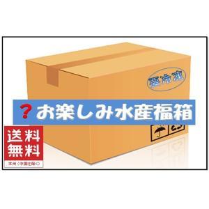 福袋 福箱 魚介 海鮮 びっくり お楽しみ 水産 福袋 X  漬け 魚