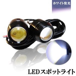 LED スポットライト 5W相当の爆光 大玉 2個セット|sendaizuihouen-store