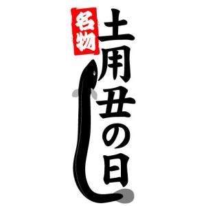 のぼり のぼり旗 名物 土用 丑の日|sendenjapan