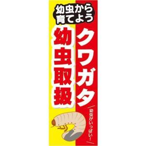 のぼり のぼり旗 幼虫から育てよう クワガタ 幼虫取扱|sendenjapan