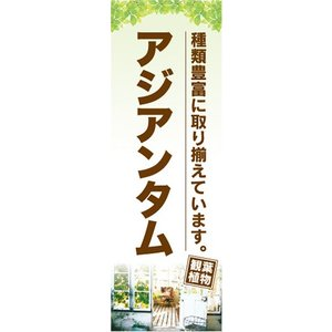 のぼり ガーデン 観葉植物 アジアンタム のぼり旗|sendenjapan