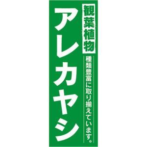 のぼり ガーデン 観葉植物 アレカヤシ のぼり旗|sendenjapan