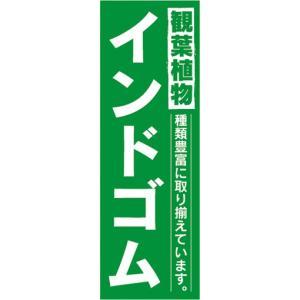 のぼり ガーデン 観葉植物 インドゴム のぼり旗|sendenjapan