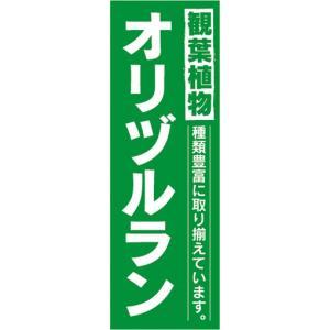 のぼり ガーデン 観葉植物 オリヅルラン 種類豊富に取り揃えています。 のぼり旗|sendenjapan