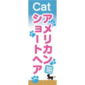 のぼり のぼり旗 アメリカンショートヘア 猫 キャット Kitten|sendenjapan