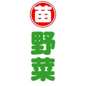 のぼり のぼり旗 苗 野菜|sendenjapan