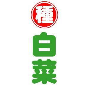 のぼり のぼり旗 種 白菜|sendenjapan