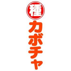 のぼり のぼり旗 種 カボチャ|sendenjapan
