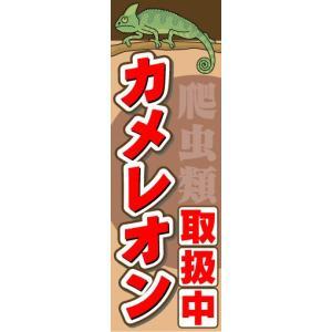 のぼり のぼり旗 カメレオン 取扱中|sendenjapan