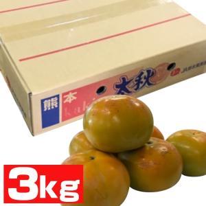 熊本産 太秋柿 3kg 12玉 sendoichiba