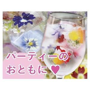 【パーティーの話題に!】美食花アイスキューブ 12個入り|senkaen