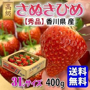 送料無料 さぬきひめ いちご 3Lサイズ 400g香川県産 ギフト senkatsuhan