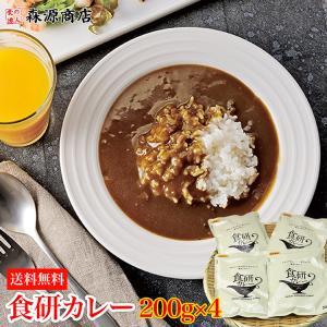 カレー レトルト 食研カレー 200g×4袋 中辛 ビーフカレー 日本食研 業務用 メール便 常温便