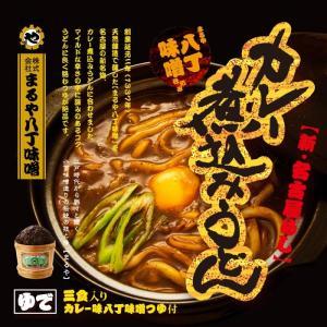 まるや八丁味噌カレー煮込みうどん|senkyakumenrai