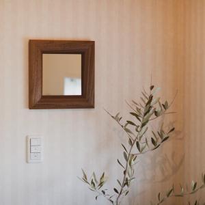 ソル 51x51cm ウォールナット材 壁掛けミラー 正方形|sennoki