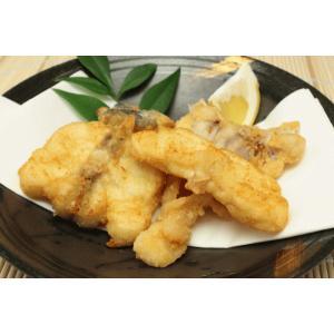 とらふぐ三枚おろし1.1kgサイズ|sennzaki-fugu-daiko|05