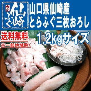 とらふぐ三枚おろし1.2kgサイズ|sennzaki-fugu-daiko