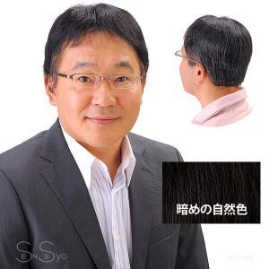 男性用 紳士用ヘアピース 自然な部分かつら 暗め自然色 人工地肌付 HPN-150|senssyo