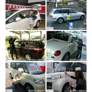 ガラス系コーティング剤  ファインクリスタル カーシャンプー ボディークリン 洗車用 スポンジ お試し 送料無料 割引券利用対象外商品|sensya|12