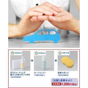 ガラス系コーティング剤  ファインクリスタル カーシャンプー ボディークリン 洗車用 スポンジ お試し 送料無料 割引券利用対象外商品|sensya|13