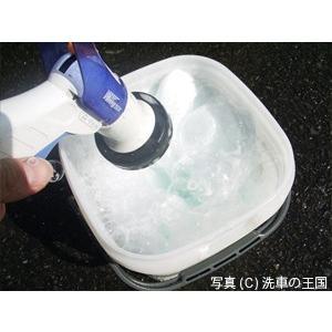 ガラス系コーティング剤  ファインクリスタル カーシャンプー ボディークリン 洗車用 スポンジ お試し 送料無料 割引券利用対象外商品|sensya|05