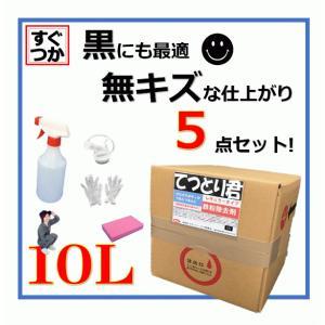 鉄粉除去剤 鉄粉取り 融雪剤 てつとり君 10L レギュラータイプ