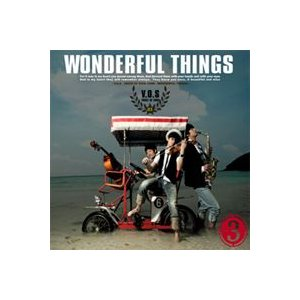 V.O.S (VOS) / Wonderful Things [V.O.S (VOS)] SDL0117 [CD]