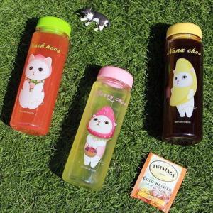 [韓国雑貨] [JETOY]ネコ好きさんのためのマイボトル choo choo Bottle [かわいい]|seoul4