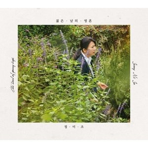 (予約販売)チョン・ミジョ / 若い日の魂 [チョン・ミジョ][トロット:演歌][CD] seoul4
