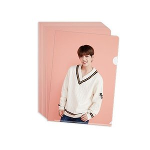 SEVENTEEN(セブンティーン) 公式クリアファイル White / Pink(選べる2冊セット)[official goods]|seoul4