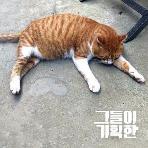 彼らが企画した / アンニョン[韓国 CD][インディーズ ]