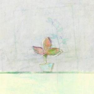 チョ・スンジョン / LIMITED EDITION VOL. 1 [チョ・スンジョン][CD]|seoul4