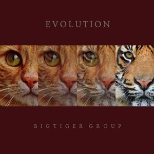 BIGTIGER GROUP / EVOLUTION [ジャズ][韓国 CD]|seoul4