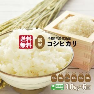 【定期便】令和1年産 新米 コシヒカリ 10Kg 精米(白米)・6回(半年分)|seramai