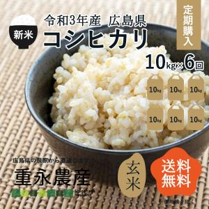 【定期便】令和1年産 新米 コシヒカリ 10Kg 玄米・6回(半年分)|seramai
