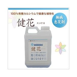 液体肥料 「健花」液肥 濃縮タイプ2kg 驚くほど病気に強くなる|sessuimura