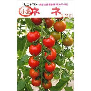 ミニトマト ネネの種12粒入り 水耕栽培 おすすめ ※ネコポス便の場合は代引きがご利用いただけません sessuimura