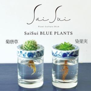SaiSui BLUE PLANTS 【全2種類】 花瓶 フラワーベース ガラス 陶器 水栽培 おしゃれ かわいい ギフト サボテン 球根