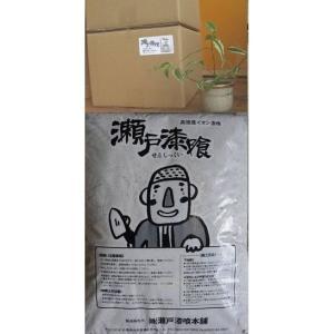 瀬戸漆喰(練り漆喰)20キロ  日本初!大臣認定取得 令和2年10月1日より価格改定でより使い易くなりました♪|setoshikkui-no1