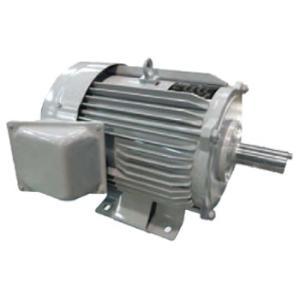 三菱電機(ミツビシ) 三相モーター 汎用モータ SF-PRO-15KW-4P-400V AC400V 4極 脚取付 ブレーキ無 屋外