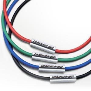 SEVルーパーtypeM 【takuma-gp】限定モデル(レッド/グリーン/ブルー/ブラック)|sev