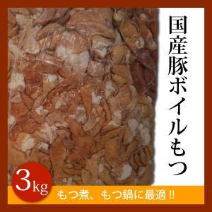 ボイルもつ 3kg 業務用 国産豚使用 ミックス白もつ 煮、...