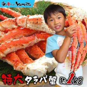特大タラバガニ脚 1kg 蟹 カニ かに たらばがに 船上ボイル 船上凍結厳選 グルメ ギフト