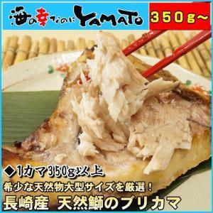 長崎県産天然鰤のブリカマ 1カマ350g以上の特大サイズ ぶり かま ぶりかま 鰤