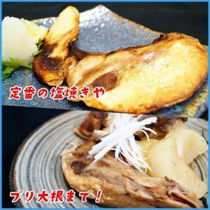 訳あり 長崎県産 天然鰤のブリカマ 1カマ20...の詳細画像2
