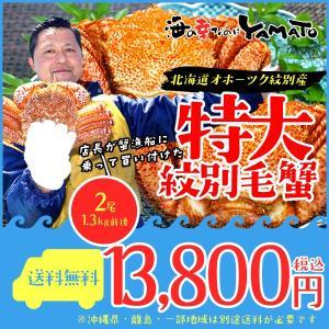 毛蟹(毛ガニ かに) 北海道オホーツク紋別産 特大堅蟹650...