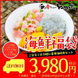 海鮮福袋丼三種グルメセット ギフト (ウニ/ネギトロ/シラス)