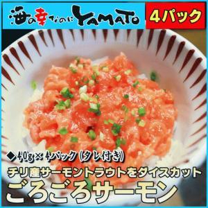 ゴロゴロサーモン 小分け40g×4パック さーもん 鮭 サケ さけ パティ 海の幸なのにYAMATO